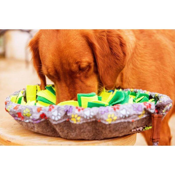WUFSALAD - Aktivitets madskål til effektiv aktivering af din hund